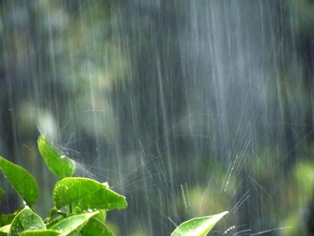 豪雨・大雨のイメージ写真
