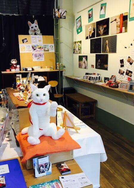 白猫のぬいぐるみ作品も展示