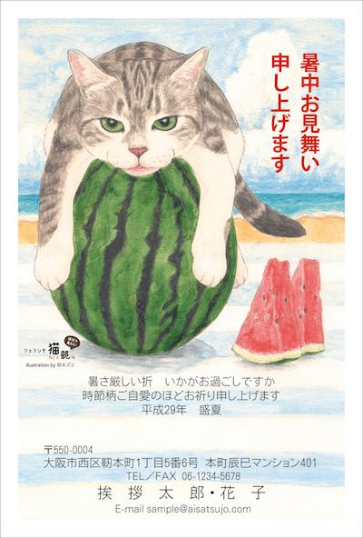 猫の暑中見舞い、夏はビーチでスイカだにゃん♪