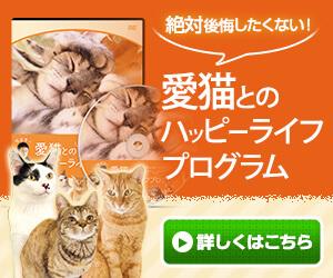 服部幸の愛猫とのハッピーライフプログラム(DVD)