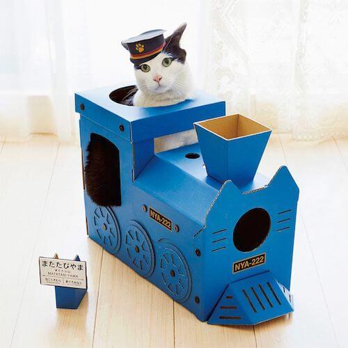 車掌さんの帽子をかぶって機関車型の猫ハウスに乗る猫