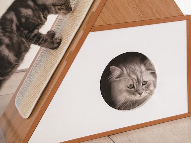 木製ロータイプキャットタワーに付いている猫ハウスで寛ぐ猫