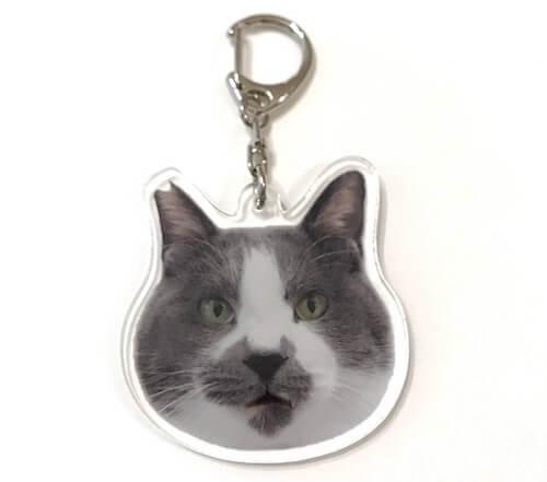 人気ネコ「くまお」のキーホルダー