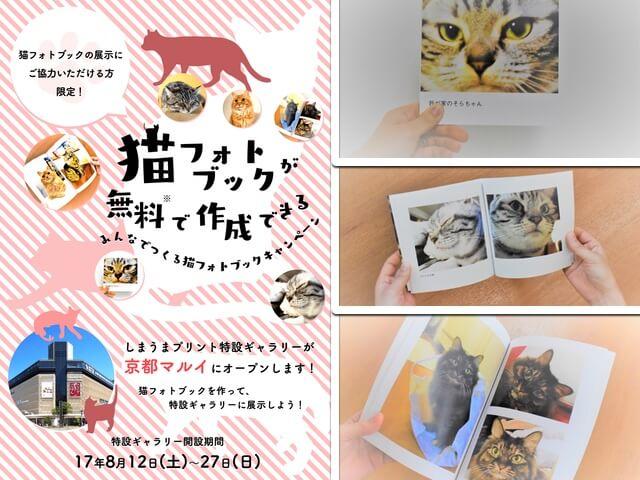 無料で猫のフォトブックを作成&展示してもらえるキャンペーンが開催中
