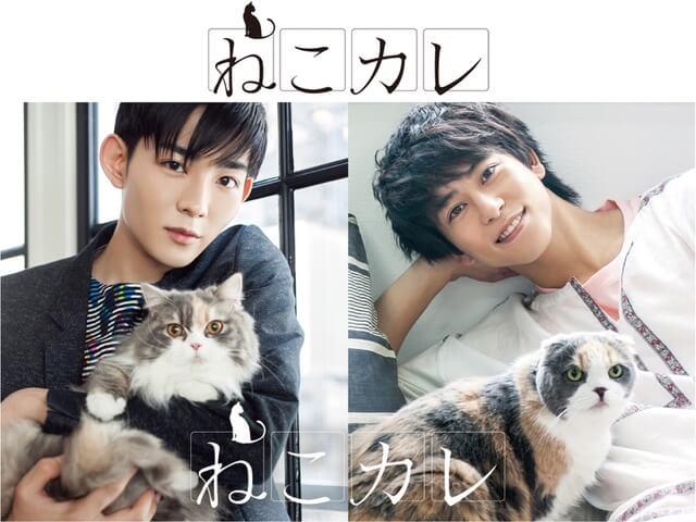 人気俳優×猫の写真展「ねこカレ」の開催が決定!ムック本も発売