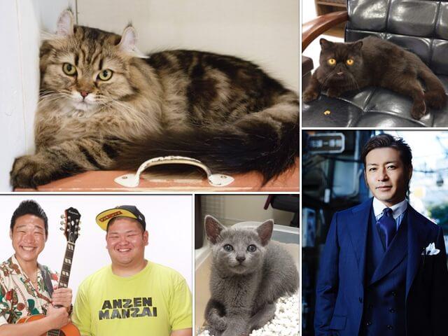 猫祭りもあるニャ!世界中のお祭りを体感できるイベントが9/4に開催