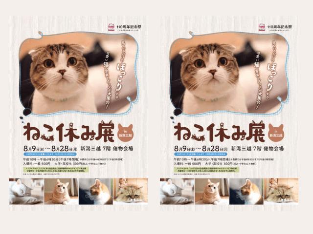 新潟三越でねこ休み展が8/9から開催!110周年記念で館内も猫まみれ