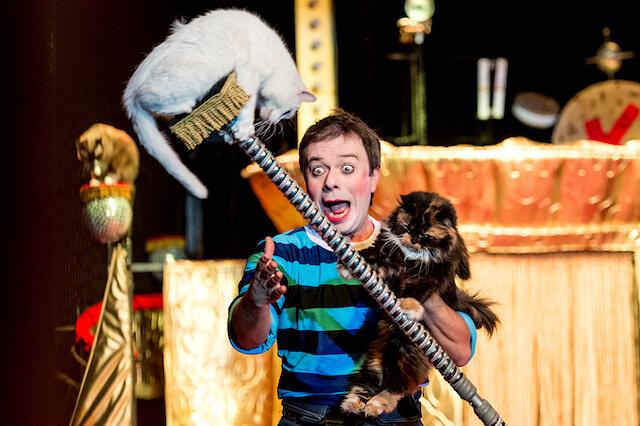 「ククラチョフの世界でたったひとつの猫劇場」の公演シーン、パフォーマンスする猫たち