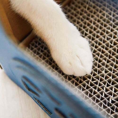 機関車型猫ハウスの底には爪とぎを設置