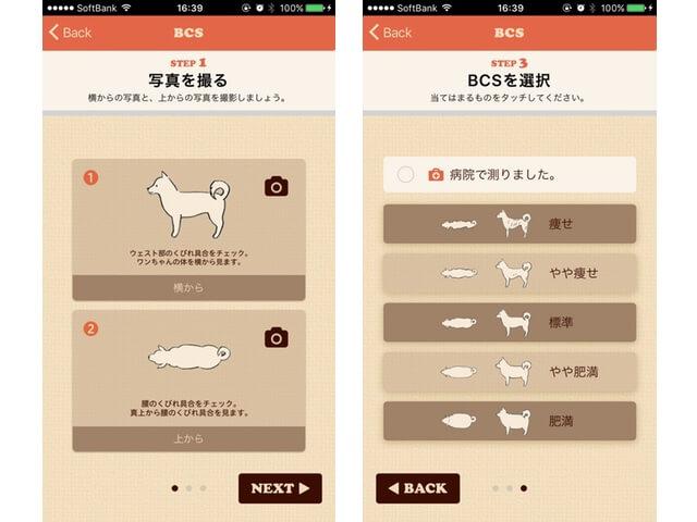 Fanimalアプリの愛猫・愛犬のBCS(ボディコンディションスコア)記録機能