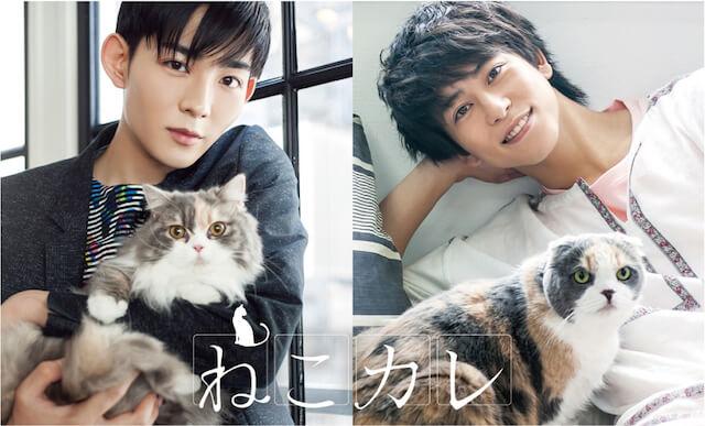 写真展&ムック本「ねこカレ」に登場する「俳優×猫」の写真
