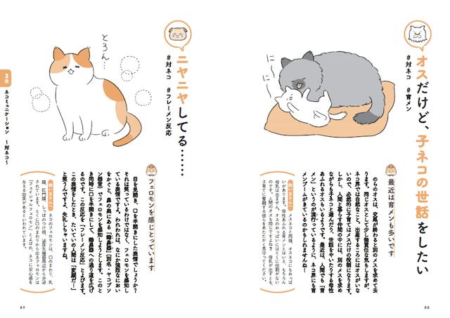 第三章 ネコミュニケーション ~対対ネコ~:書籍「飼い主さんに伝えたい130のこと ネコがおしえるネコの本音」