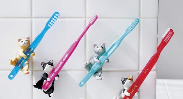 猫の歯ブラシホルダー