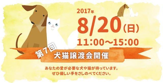 関西ペット協会 第7回犬猫譲渡会