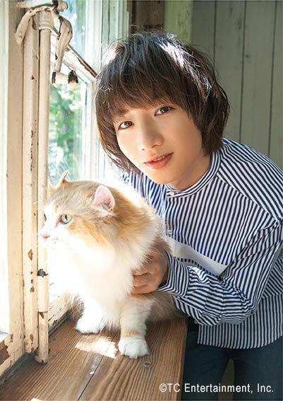 俳優「植田圭輔」×猫「アメリカンカール」の写真