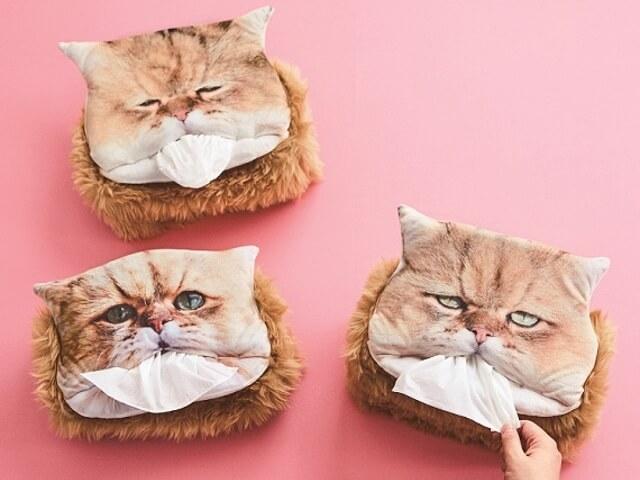 しょんぼり顔の猫「ふーちゃん」のティッシュカバーが登場