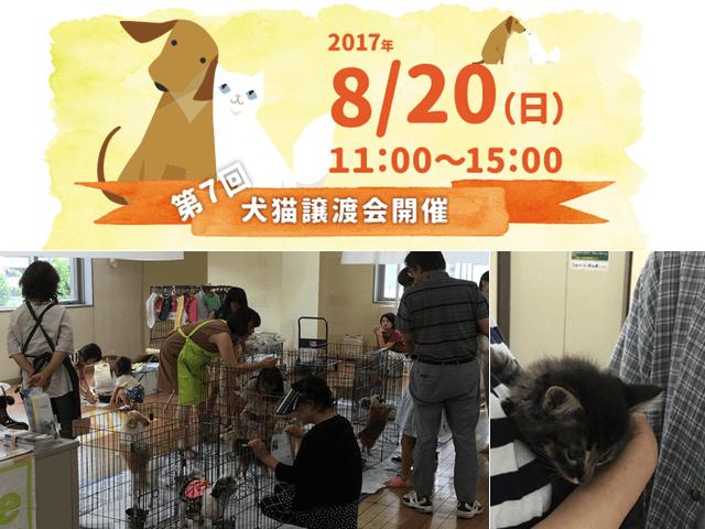 8/20に大阪・吹田市で犬猫の譲渡会が開催。譲渡希望者も募集中