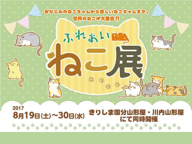 世界中の珍しい猫と触れ合える「ふれあいねこ展」山形屋2店舗で開催中