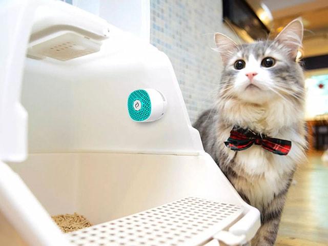 NASAも認めた技術で猫トイレを強力消臭、小型消臭器「VentiFresh」