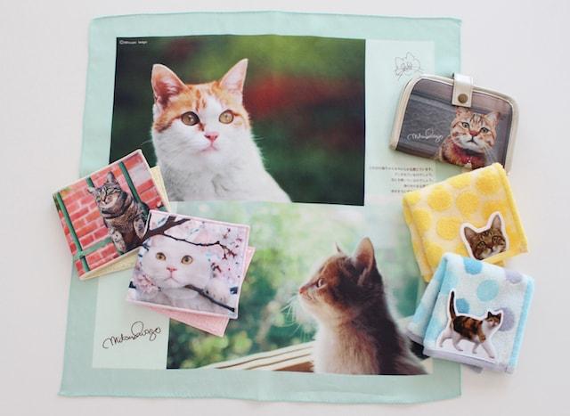 岩合さんの猫グッズ(ハンカチ、小銭入れなど) by 池袋マルイ