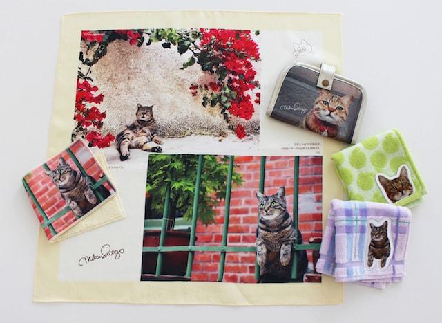 岩合さんの猫グッズ(世界ネコ歩きの写真) by 池袋マルイ