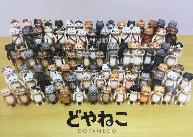 100体のドヤ顔をした猫「どやねこ」作品