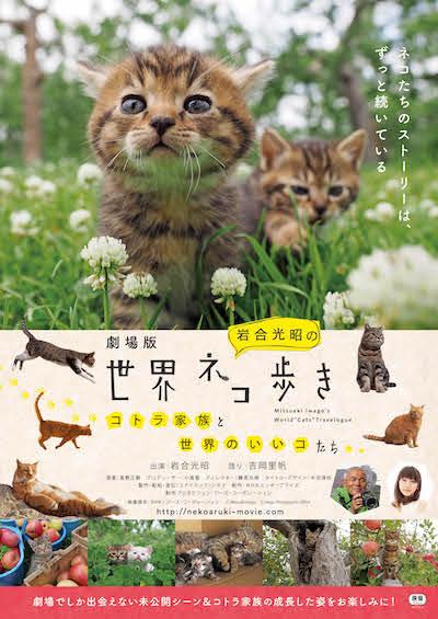 る映画、「劇場版 岩合光昭の世界ネコ歩き コトラ家族と世界のいいコたち」
