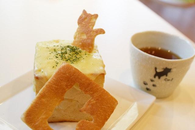 短足ネコ専門「猫カフェもふにゃん」の食事メニュー、グラタンパン