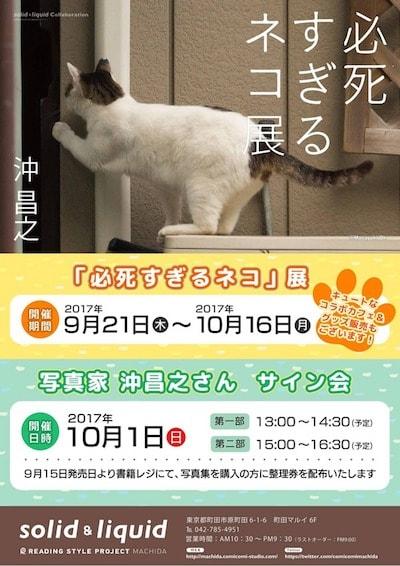 沖昌之「必死すぎるネコ」展 in 町田マルイ