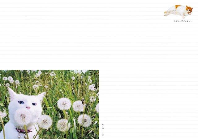 月間ページの間には便利なメモページを用意