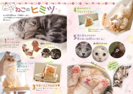 猫の写真もたっぷり収録している図鑑「ねこがおうちにやってきた!」