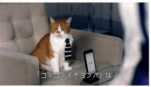 フテにゃん by ワイモバイルのテレビCM「ズキュン!」シリーズ