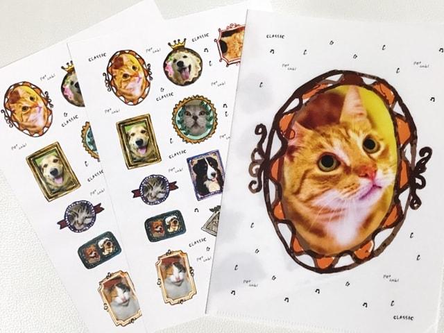 愛猫の写真からシールとクリアホルダーが作れるiPhoneアプリ「PETLABEL(ペットラベル)」が登場