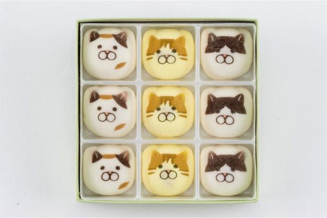 三毛猫、茶トラ、黒白ハチワレ、3種類の猫の鳳瑞(ほうずい)