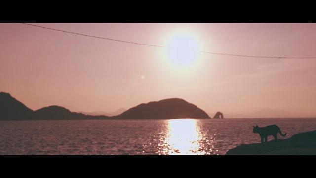 猫島・相島で撮影したエド・シーランのミュージックビデオ