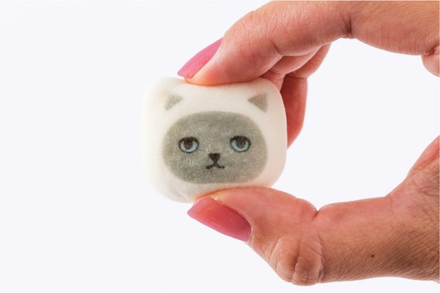雑貨ブランド・KEORA KEORA(ケオラケオラ)の猫の鳳瑞(ほうずい)
