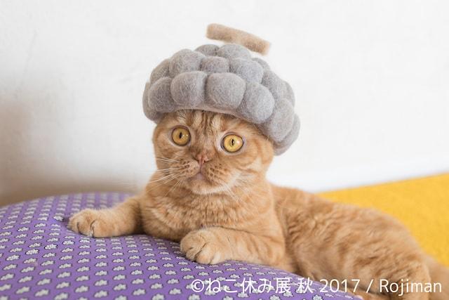 rojimanの猫の抜け毛で作った帽子作品1