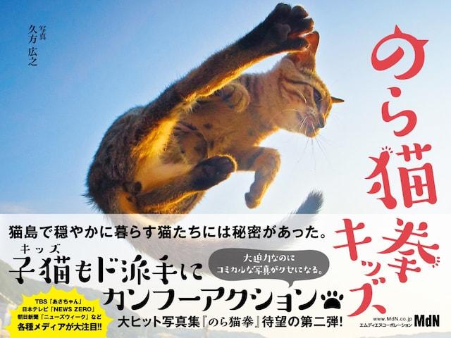 ネコ拳法の使い手ばかりを集めた写真集の第2弾「のら猫拳キッズ」