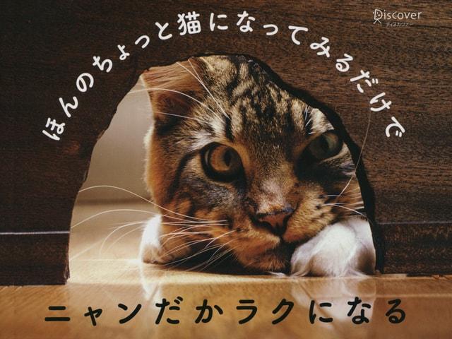 猫の写真と名言で綴った書籍「猫が教えてくれたほんとうに大切なこと」