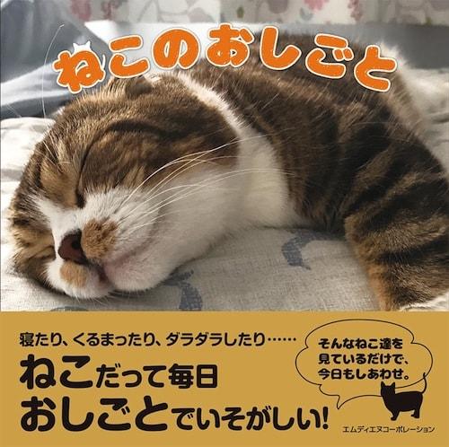 猫の写真集「ねこのおしごと」