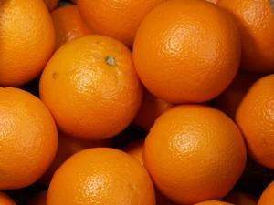 20121123_orange_3214_w800