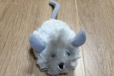 猫のラジコンおもちゃゴーゴーマウス