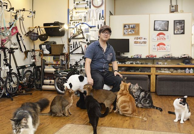 Cat Cafe 鮪 – 大阪 新深江の猫カフェ