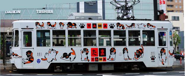 たま電車 岡山