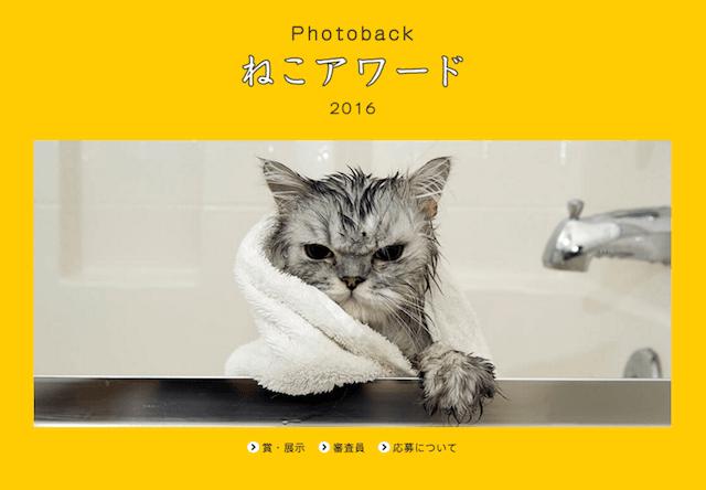 Photoback ねこアワード展 2016
