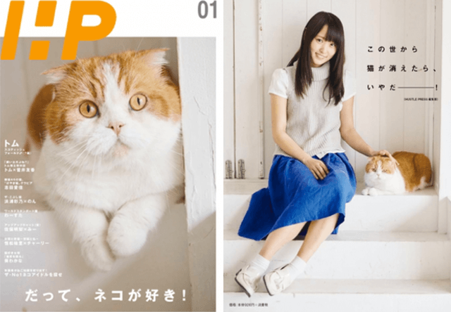 欅坂46・菅井友香の愛猫が表紙を飾るミニコミ誌