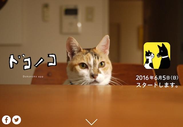 ほぼ日アプリ「ドコノコ」