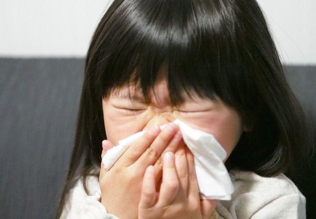 猫アレルギー  子供