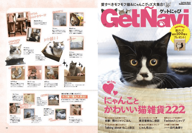 GetNaviが発刊、336匹の猫まみれ本「ゲットにゃび」が明日発売