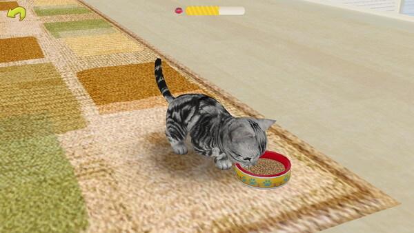 ご飯を食べる猫(てのひらニャンコ)